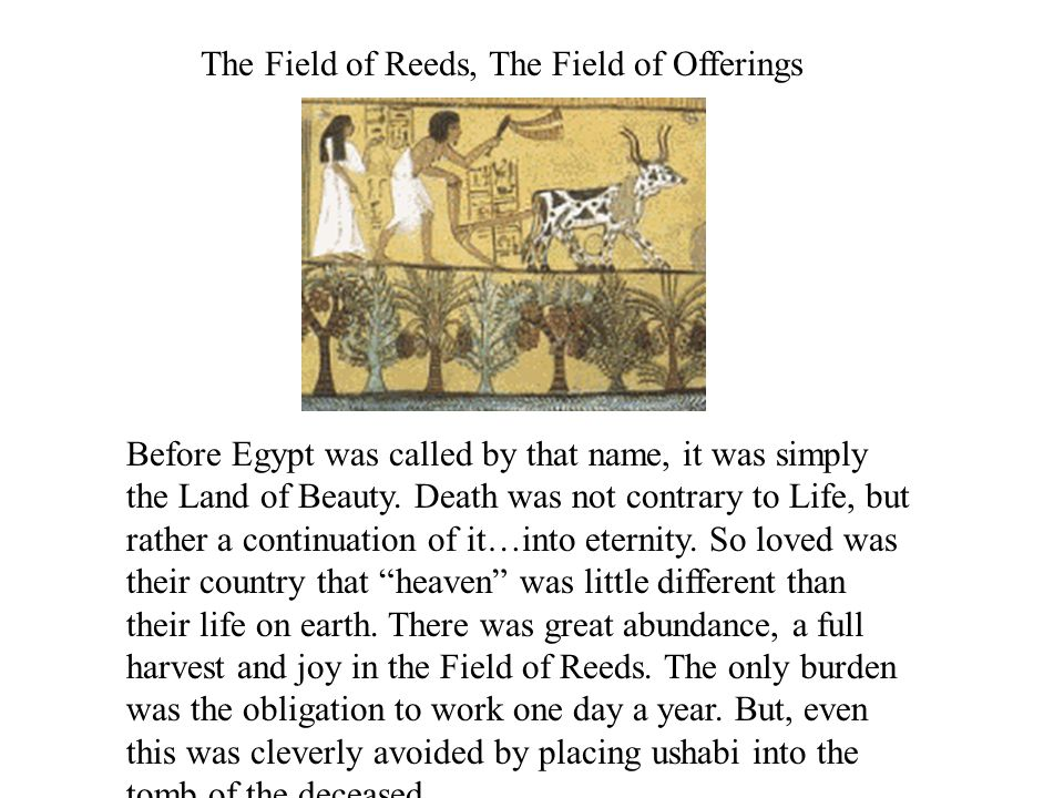 The Field of Reeds, The Field of Offerings Before Egypt was called by that name, it was simply the Land of Beauty.