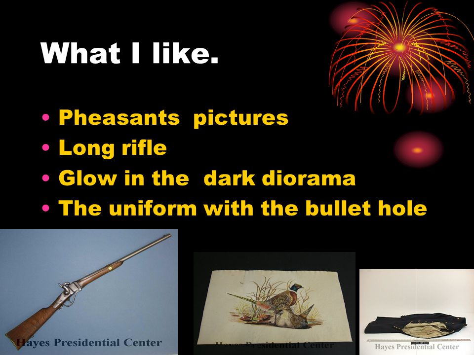 What I like. Pheasants pictures Long rifle Glow in the dark diorama The uniform with the bullet hole