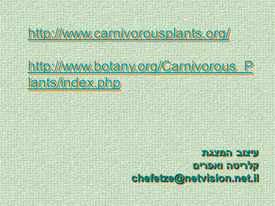 http://www.carnivorousplants.org/ http://www.botany.org/Carnivorous_P lants/index.php http://www.botany.org/Carnivorous_P lants/index.php http://www.c