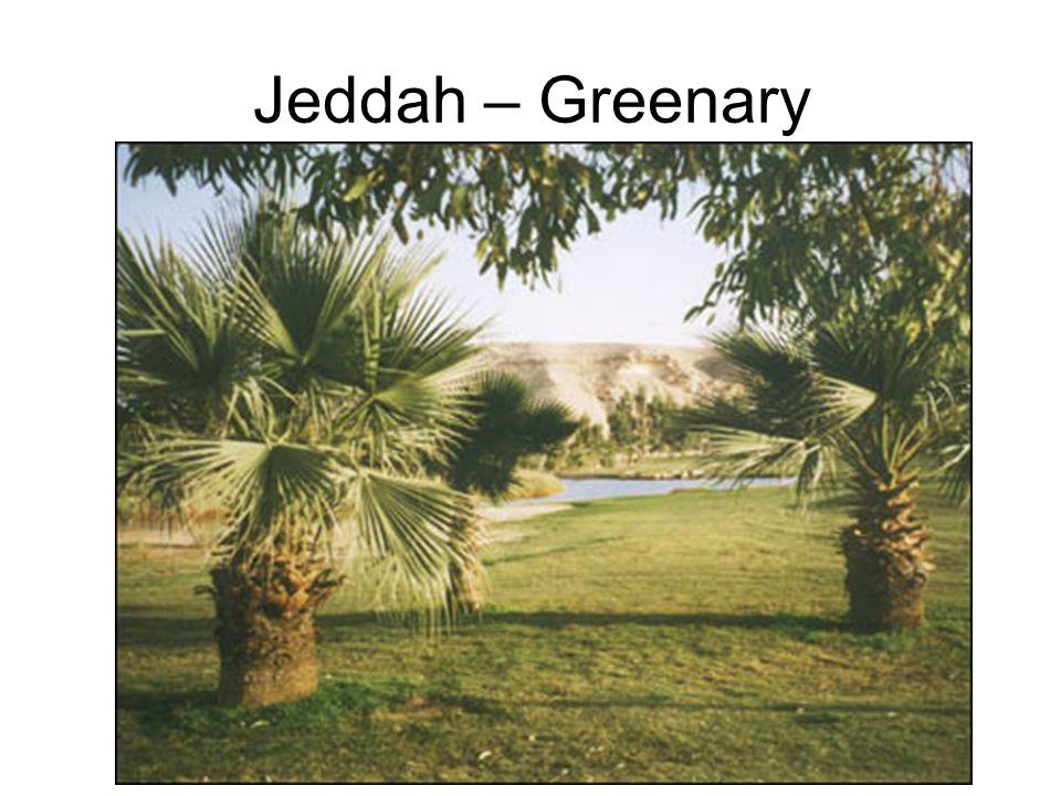 Jeddah – Greenary