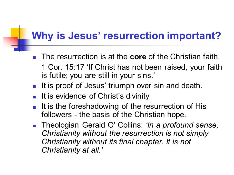 Did anyone see Jesus after the resurrection.