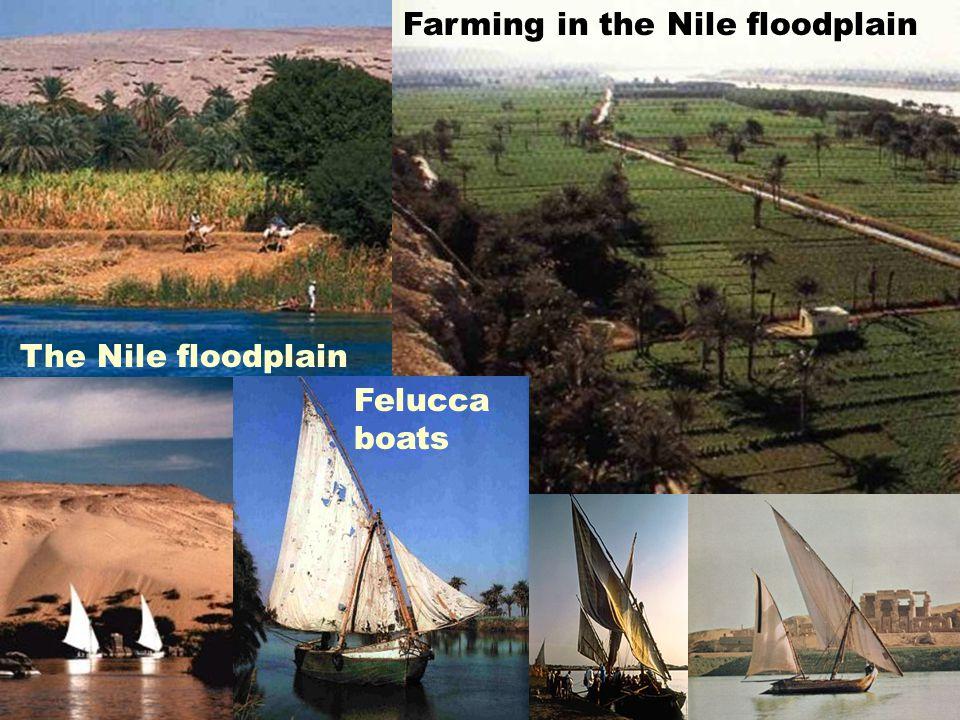 The Nile floodplain Farming in the Nile floodplain Felucca boats
