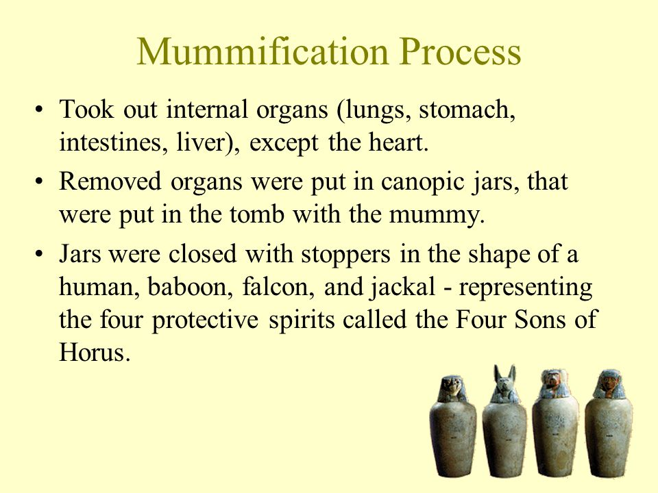 Mummification Process Took out internal organs (lungs, stomach, intestines, liver), except the heart. Removed organs were put in canopic jars, that we