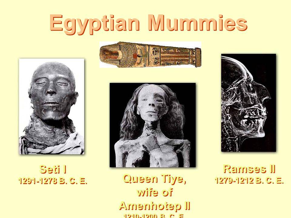 Egyptian Mummies Seti I 1291-1278 B. C. E. Queen Tiye, wife of Amenhotep II 1210-1200 B. C. E. Ramses II 1279-1212 B. C. E.