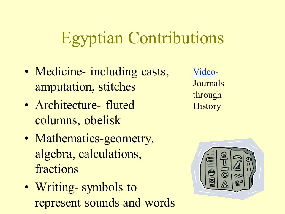 Egyptian Contributions Medicine- including casts, amputation, stitches Architecture- fluted columns, obelisk Mathematics-geometry, algebra, calculatio