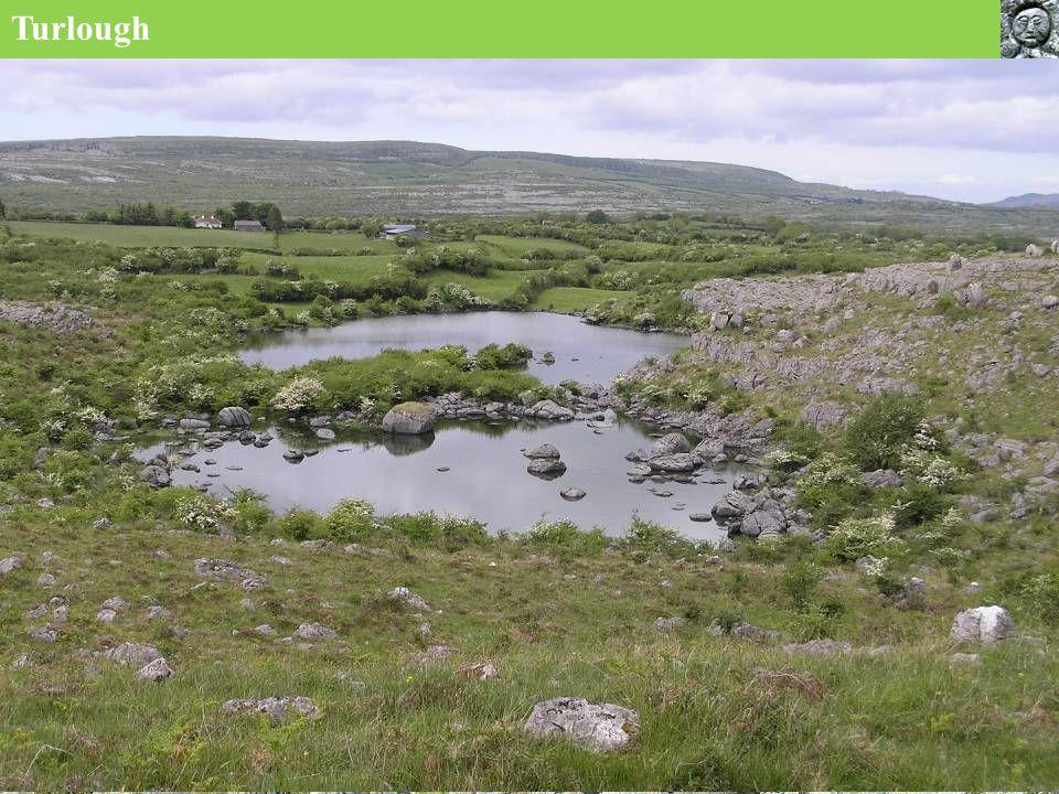 6,000 years ago in the Burren …