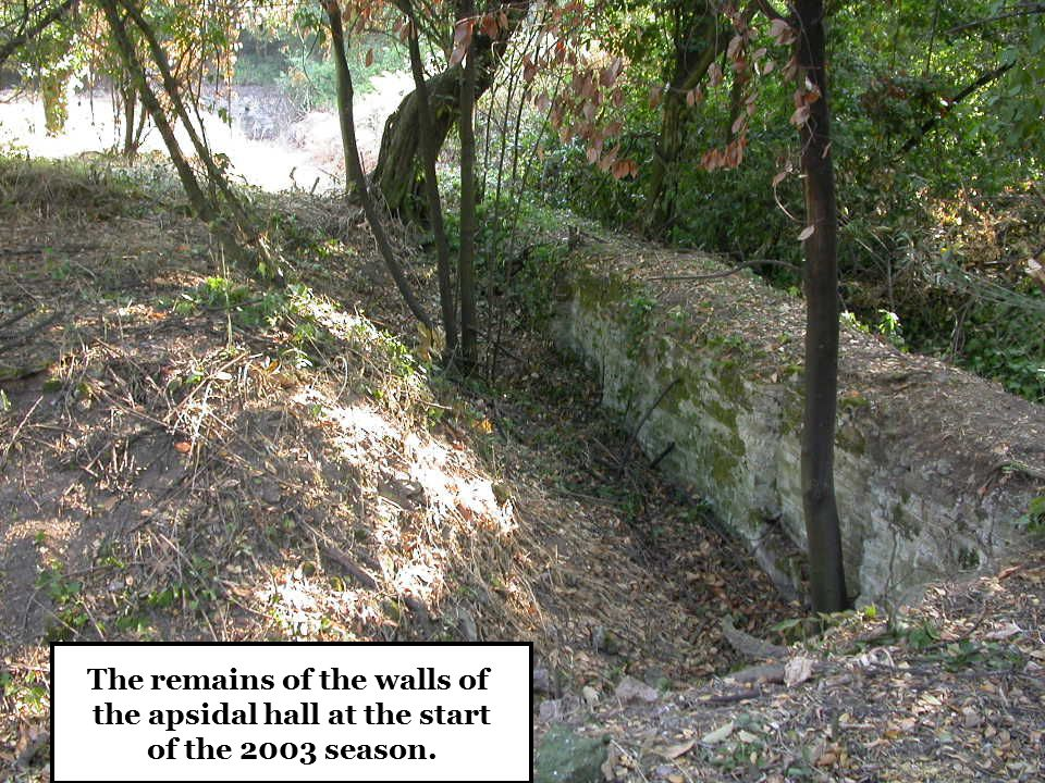 The remains of the walls of the apsidal hall at the start of the 2003 season.