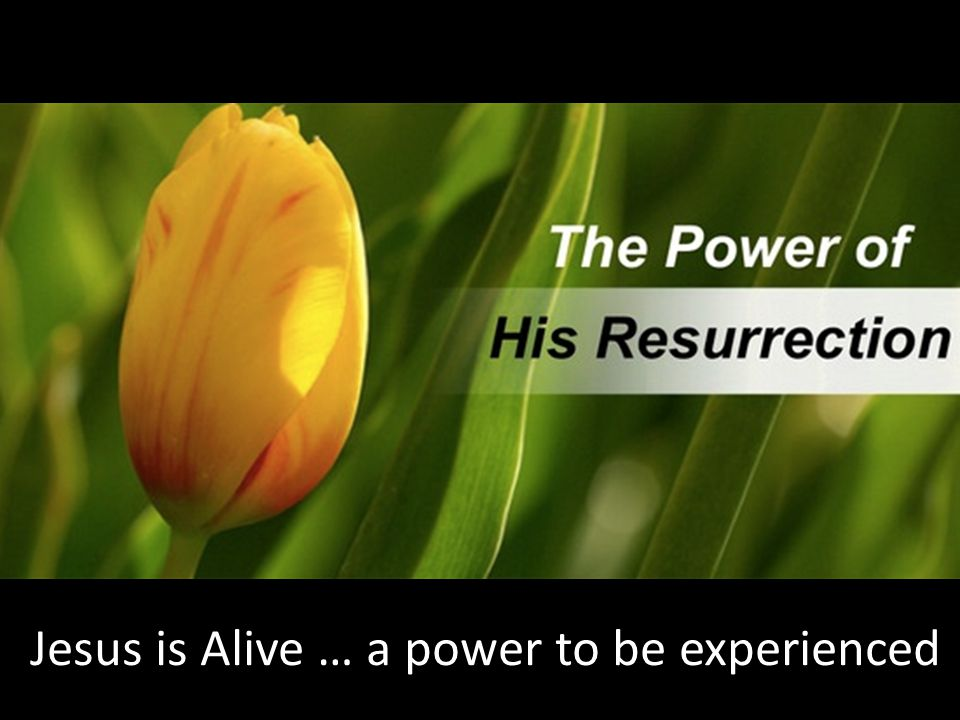Jesus is Alive … a power to be experienced