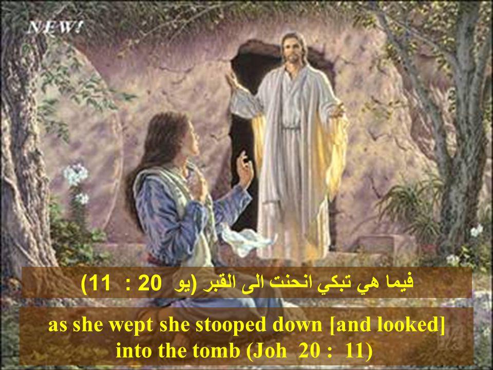 لو كنت ههنا Then He came and touched the open coffin, and those who carried [him] stood still.