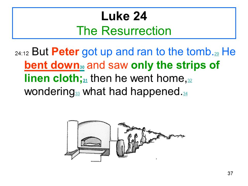 37 Luke 24 The Resurrection 24:12 But Peter got up and ran to the tomb.
