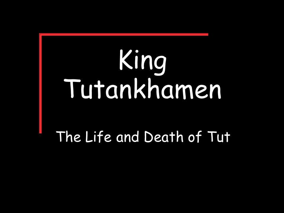 King Tutankhamen The Life and Death of Tut