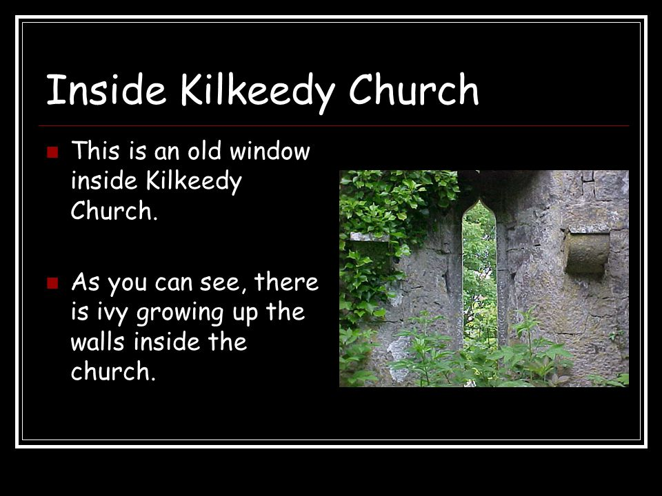Inside Kilkeedy Church This is an old window inside Kilkeedy Church. As you can see, there is ivy growing up the walls inside the church.