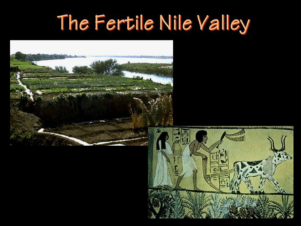 The Fertile Nile Valley