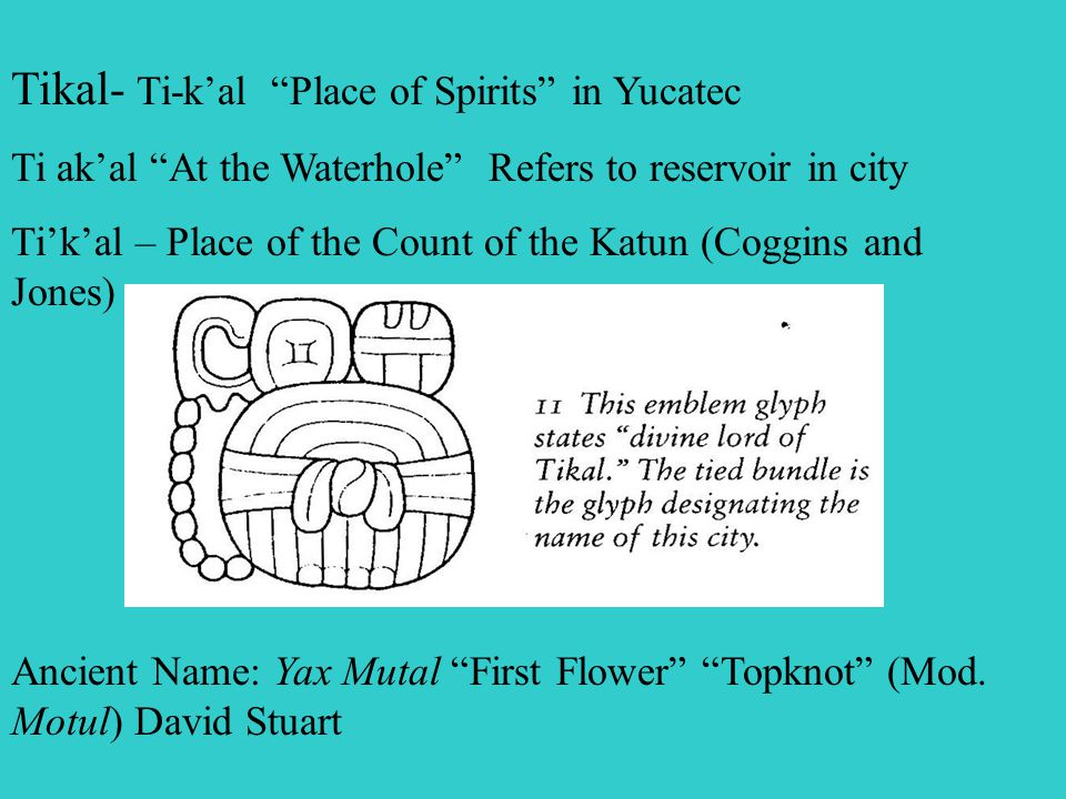 Tikal- Ti-k'al Place of Spirits in Yucatec Ti ak'al At the Waterhole Refers to reservoir in city Ti'k'al – Place of the Count of the Katun (Coggins and Jones) Ancient Name: Yax Mutal First Flower Topknot (Mod.