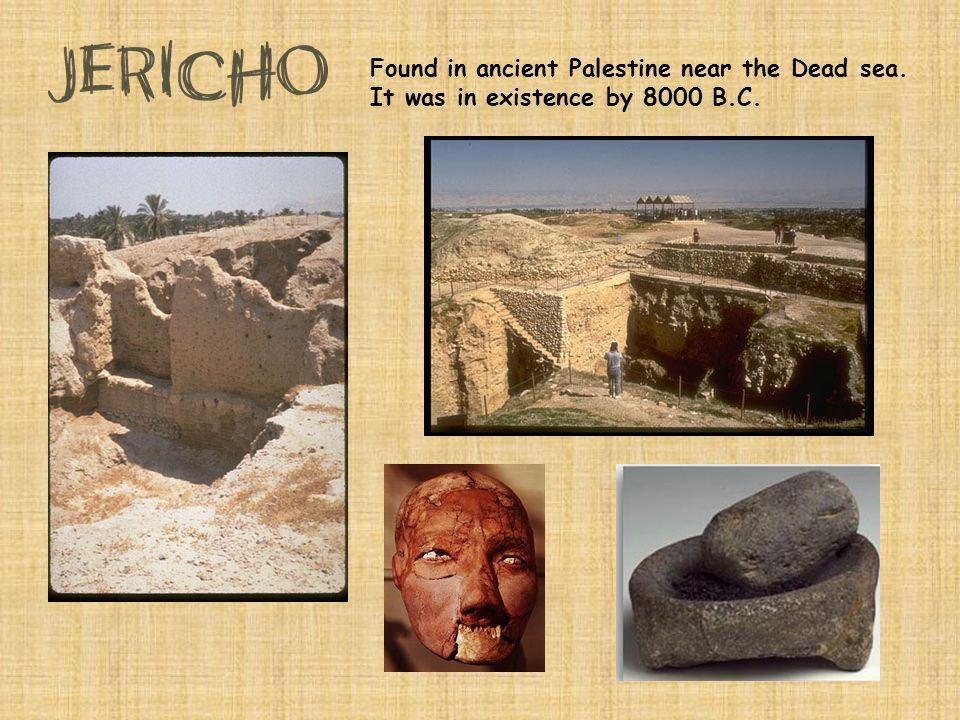 Found in ancient Palestine near the Dead sea. It was in existence by 8000 B.C.