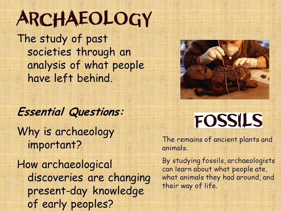 Archaeology is important because… It helps modern people understand past civilizations By studying past cultures, we can get an understanding of the culture's environment, lifestyle, influence, and downfall We can also learn from these civilizations and make changes in our own society