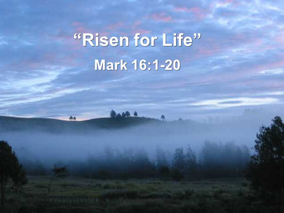 Risen for Life Mark 16:1-20