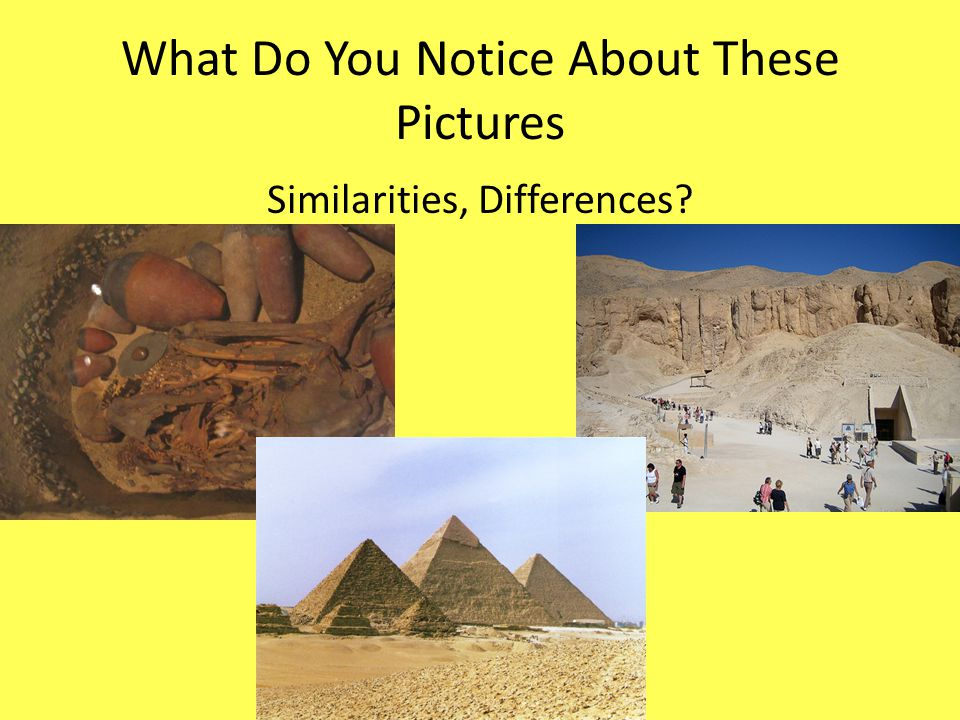 What Do You Notice About These Pictures Similarities, Differences?