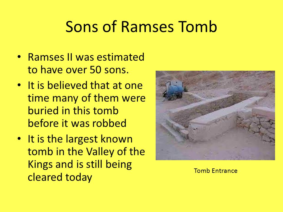 Sons of Ramses Tomb Ramses II was estimated to have over 50 sons. It is believed that at one time many of them were buried in this tomb before it was