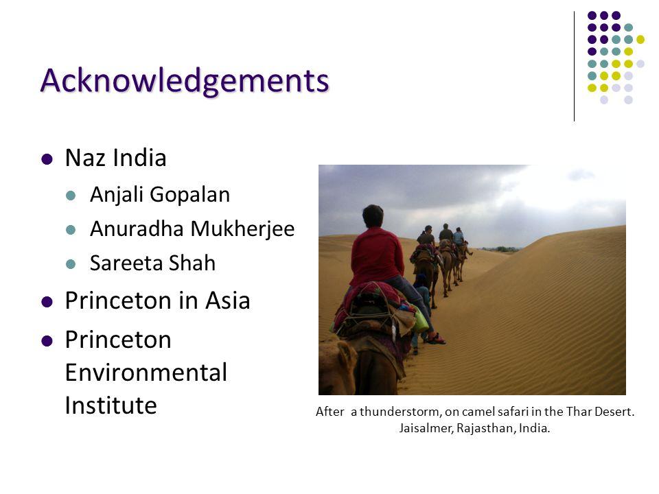 Acknowledgements Naz India Anjali Gopalan Anuradha Mukherjee Sareeta Shah Princeton in Asia Princeton Environmental Institute After a thunderstorm, on camel safari in the Thar Desert.
