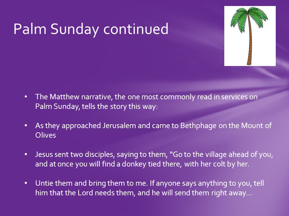 Palm Sunday continued The disciples went and did as Jesus had instructed them.