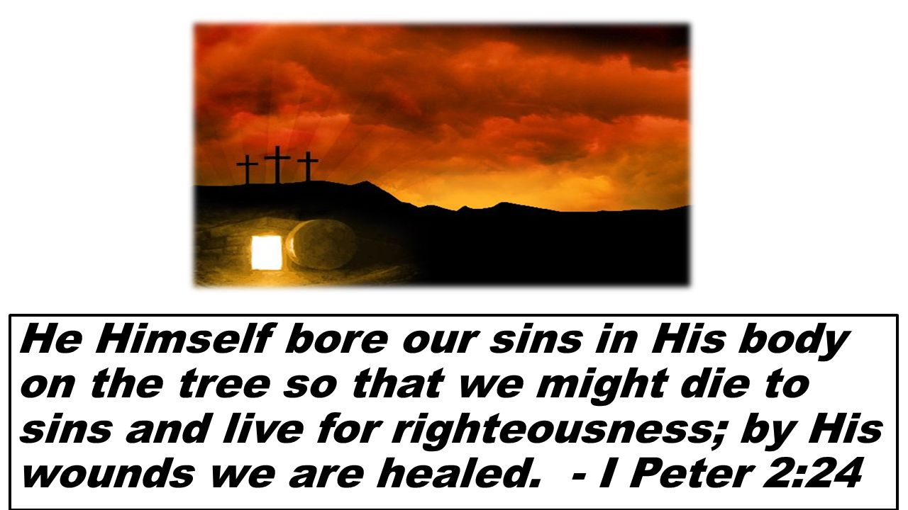 He Himself bore our sins in His body on the tree so that we might die to sins and live for righteousness; by His wounds we are healed. - I Peter 2:24