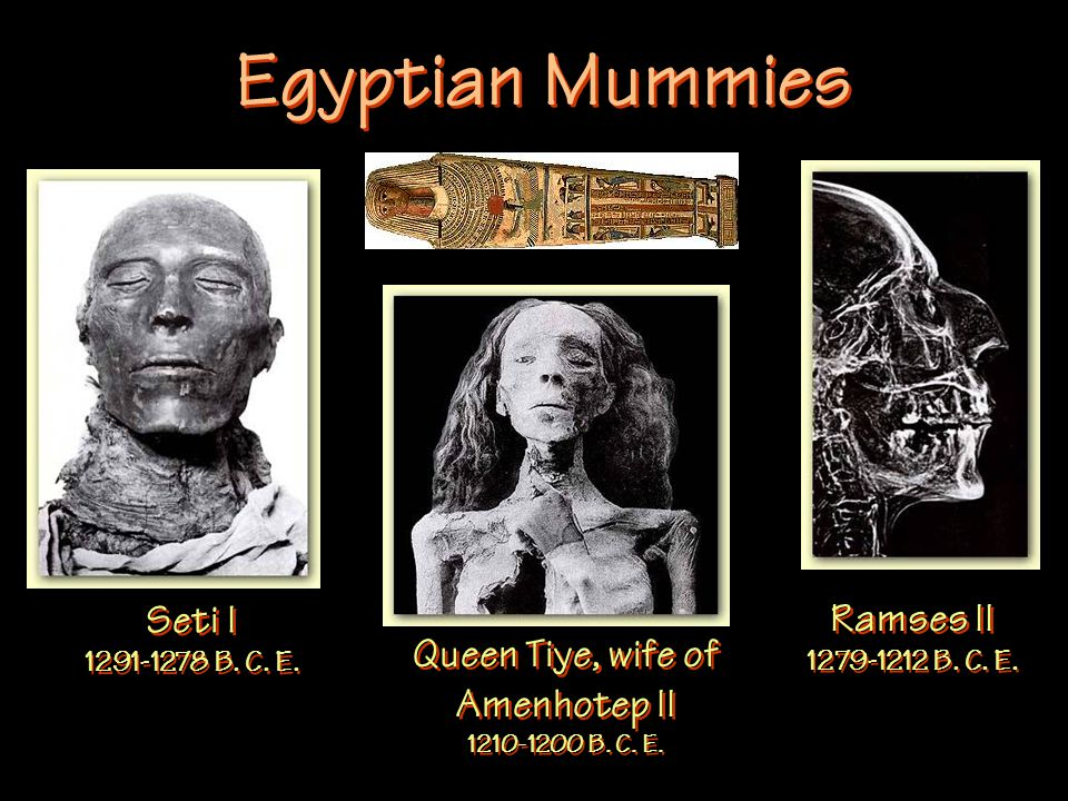 Egyptian Mummies Seti I 1291-1278 B. C. E. Queen Tiye, wife of Amenhotep II 1210-1200 B.