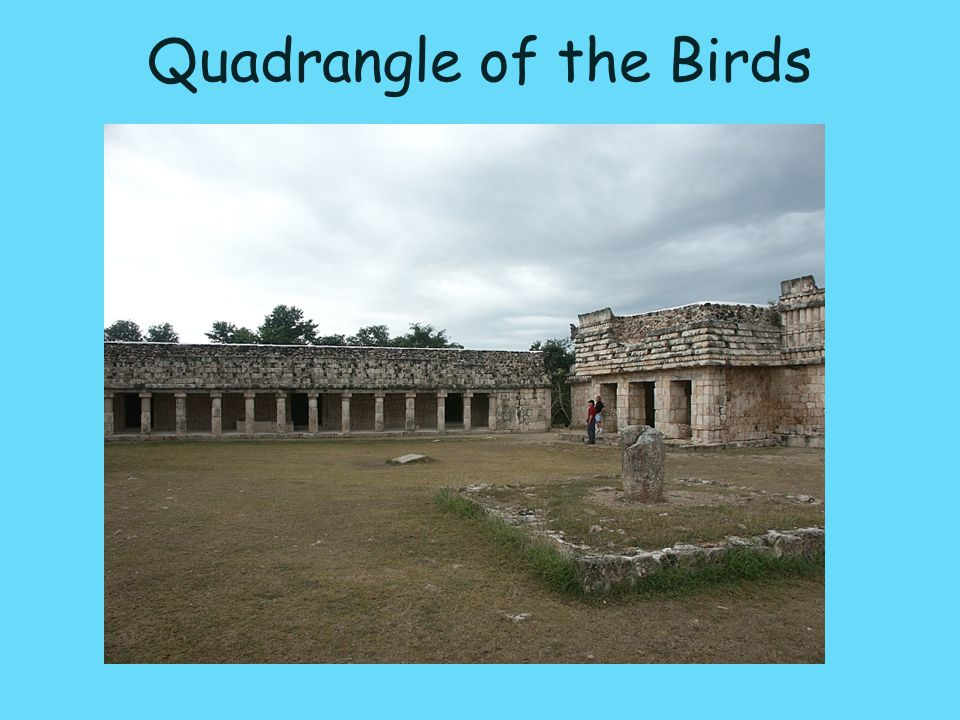 Quadrangle of the Birds