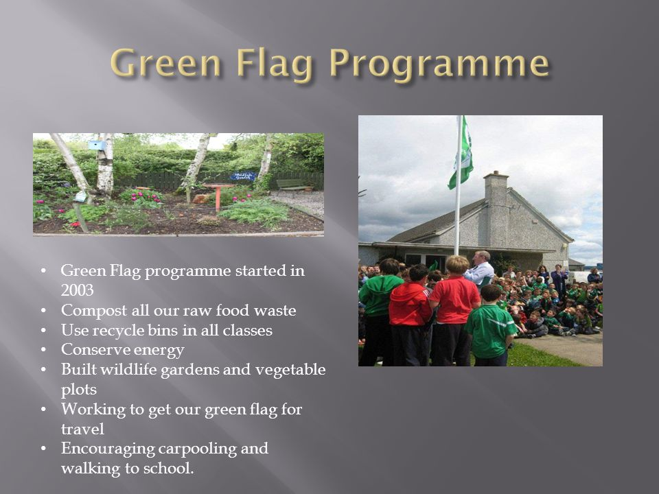 Green Flag programme started in 2003 Compost all our raw food waste Use recycle bins in all classes Conserve energy Built wildlife gardens and vegetable plots Working to get our green flag for travel Encouraging carpooling and walking to school.