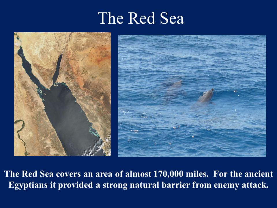 The Red Sea The Red Sea covers an area of almost 170,000 miles. For the ancient Egyptians it provided a strong natural barrier from enemy attack.