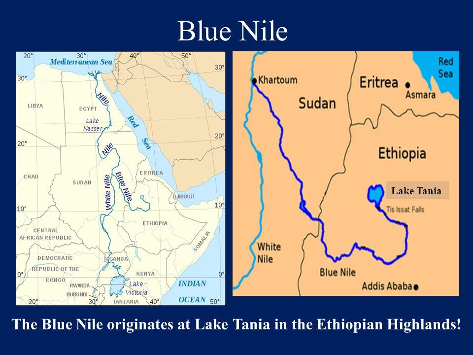 Blue Nile The Blue Nile originates at Lake Tania in the Ethiopian Highlands! Lake Tania