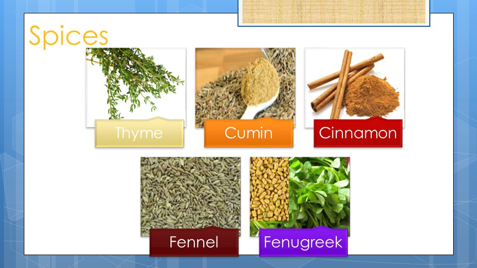 Spices ThymeCuminCinnamon FennelFenugreek