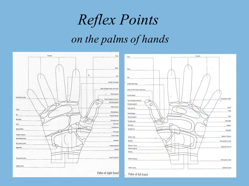 History of Reflexology The origin of reflexology, or Zone Therapy, as it is sometimes called, still remains a mystery.