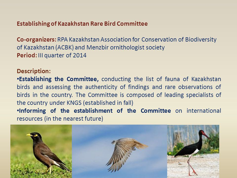 Establishing of Kazakhstan Rare Bird Committee Co-organizers: RPA Kazakhstan Association for Conservation of Biodiversity of Kazakhstan (ACBK) and Men