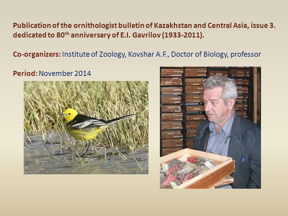Publication of the ornithologist bulletin of Kazakhstan and Central Asia, issue 3. dedicated to 80 th anniversary of E.I. Gavrilov (1933-2011). Co-org