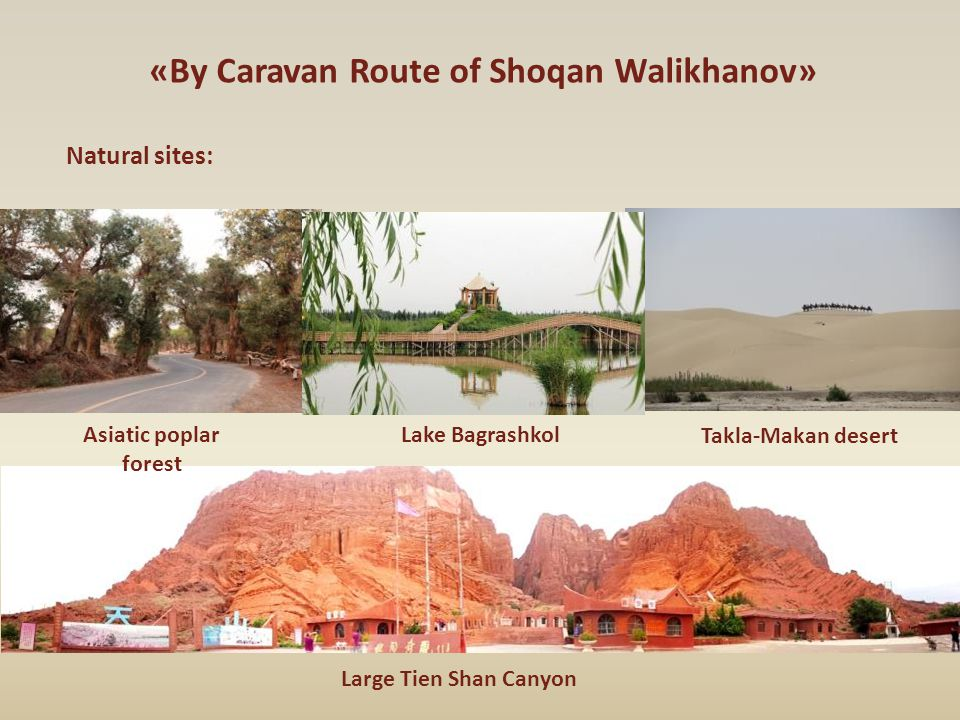 «By Caravan Route of Shoqan Walikhanov» Natural sites: Asiatic poplar forest Lake Bagrashkol Takla-Makan desert Large Tien Shan Canyon