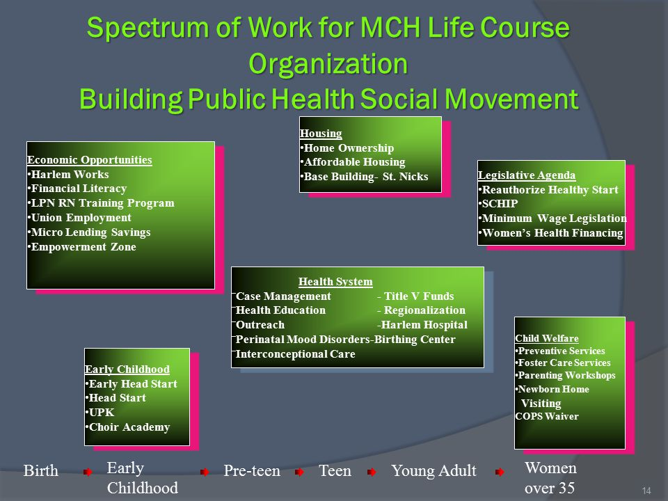Spectrum of Work for MCH Life Course Organization Building Public Health Social Movement Health System Case Management - Title V Funds Health Educatio