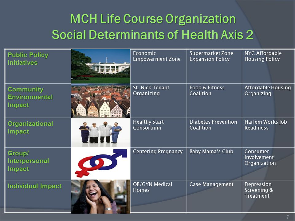 MCH Life Course Organization Social Determinants of Health Axis 2 Public Policy Initiatives Economic Empowerment Zone Supermarket Zone Expansion Policy NYC Affordable Housing Policy Community Environmental Impact St.
