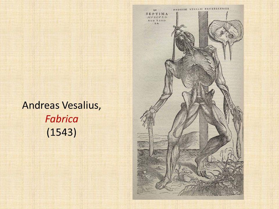 Andreas Vesalius, Fabrica (1543)