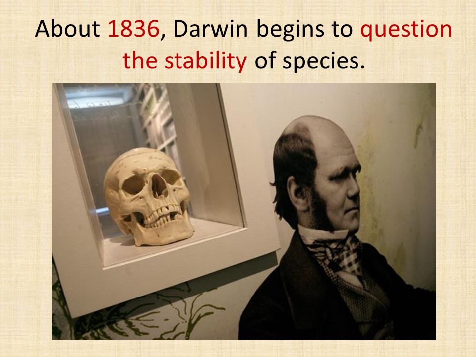 About 1836, Darwin begins to question the stability of species.