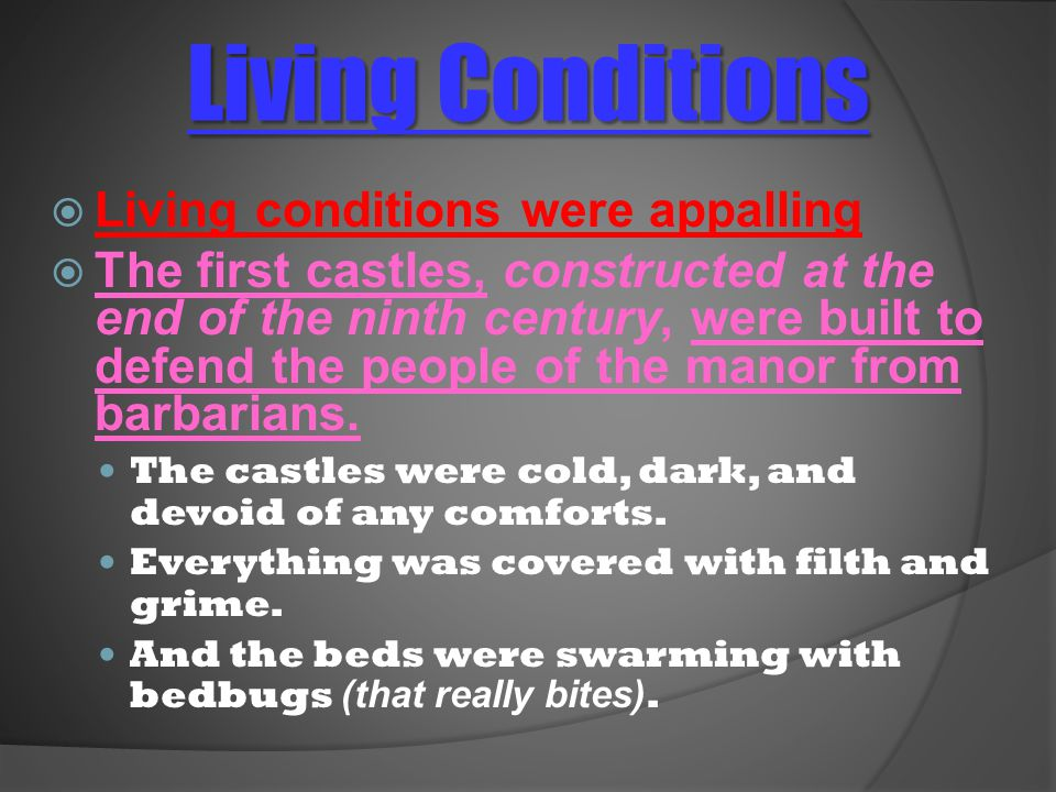 Living Conditions  Living conditions were appalling  The first castles, constructed at the end of the ninth century, were built to defend the people