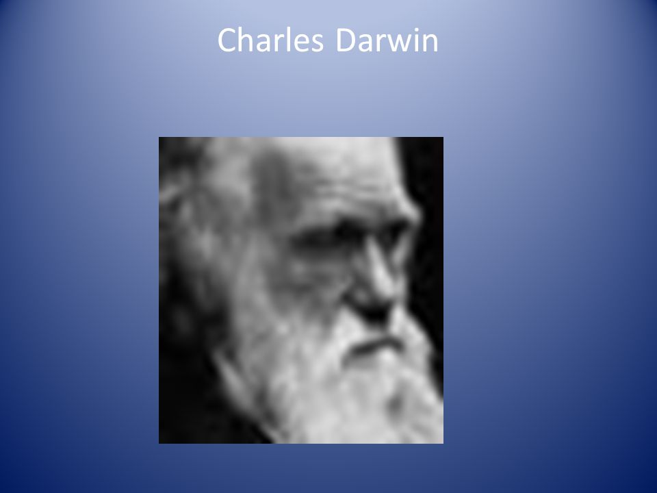 Darwin Continued….