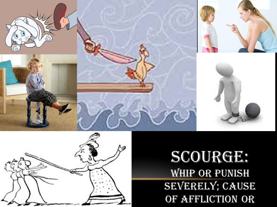 Scourge: Whip or punish severely; cause of affliction or source of severe criticism