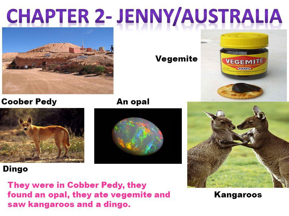 Coober Pedy Vegemite Dingo Kangaroos An opal They were in Cobber Pedy, they found an opal, they ate vegemite and saw kangaroos and a dingo.