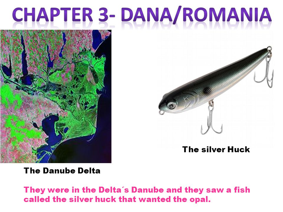 The Danube Delta The silver Huck They were in the Delta´s Danube and they saw a fish called the silver huck that wanted the opal.