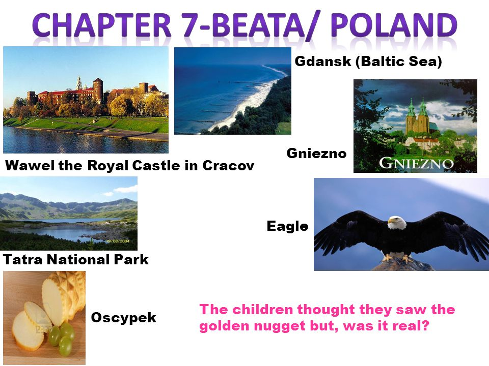 Tatra National Park Eagle Gniezno Oscypek Gdansk (Baltic Sea) Wawel the Royal Castle in Cracov The children thought they saw the golden nugget but, was it real