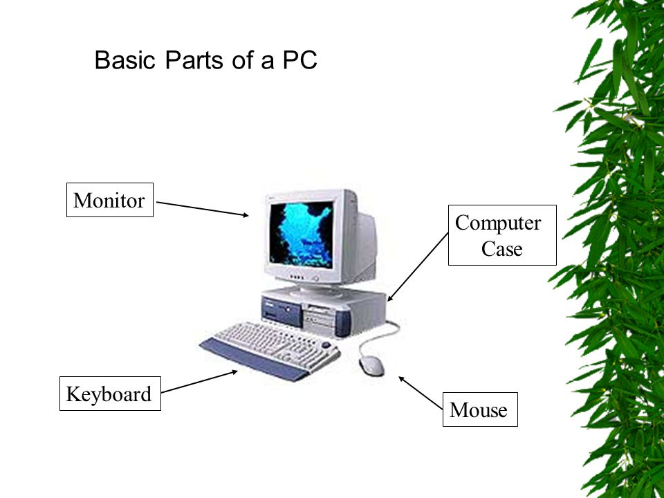 Basic Parts of a PC Mouse Keyboard Computer Case Monitor