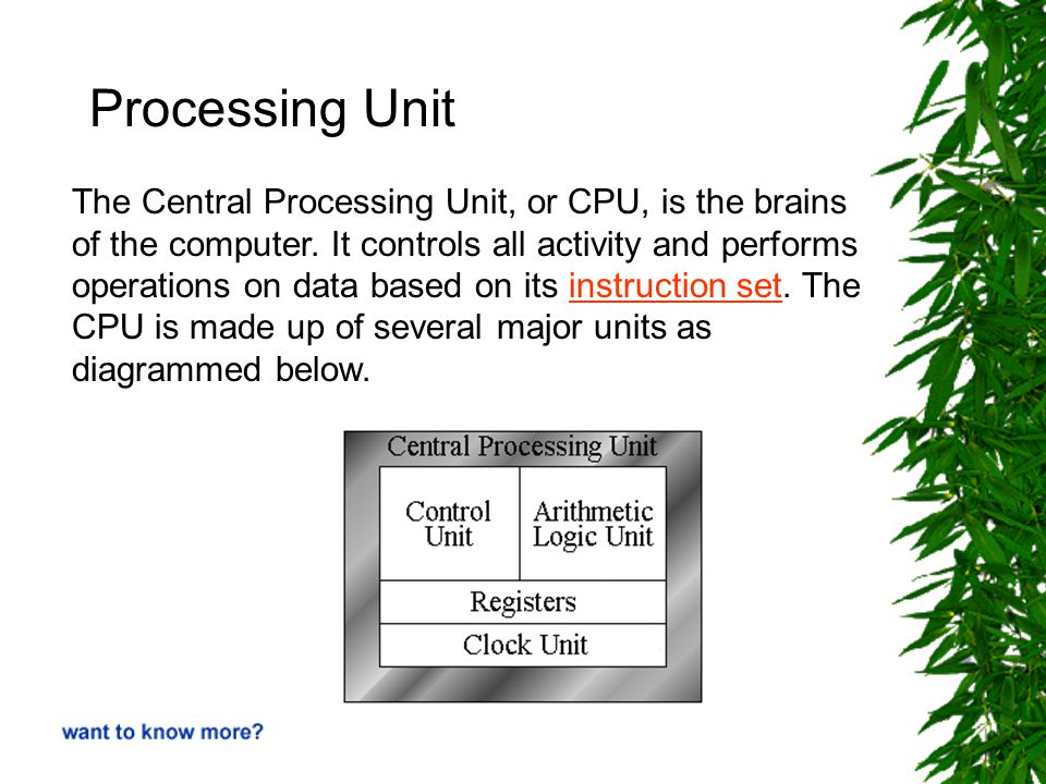 Processing Unit The Central Processing Unit, or CPU, is the brains of the computer.