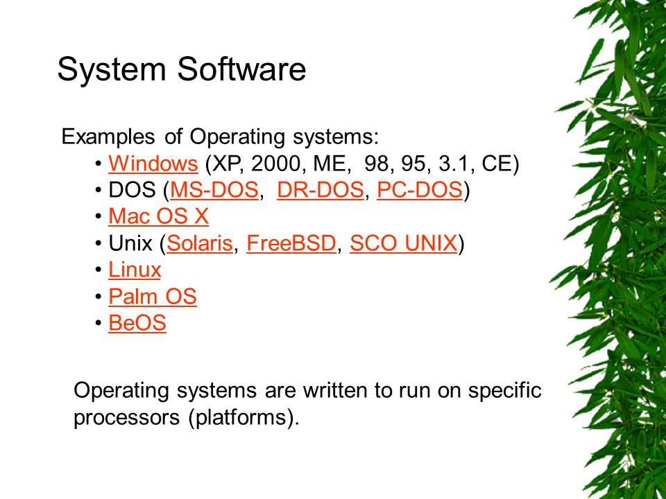 System Software Examples of Operating systems: Windows (XP, 2000, ME, 98, 95, 3.1, CE)Windows DOS (MS-DOS, DR-DOS, PC-DOS)MS-DOSDR-DOSPC-DOS Mac OS X Unix (Solaris, FreeBSD, SCO UNIX)SolarisFreeBSDSCO UNIX Linux Palm OS BeOS Operating systems are written to run on specific processors (platforms).