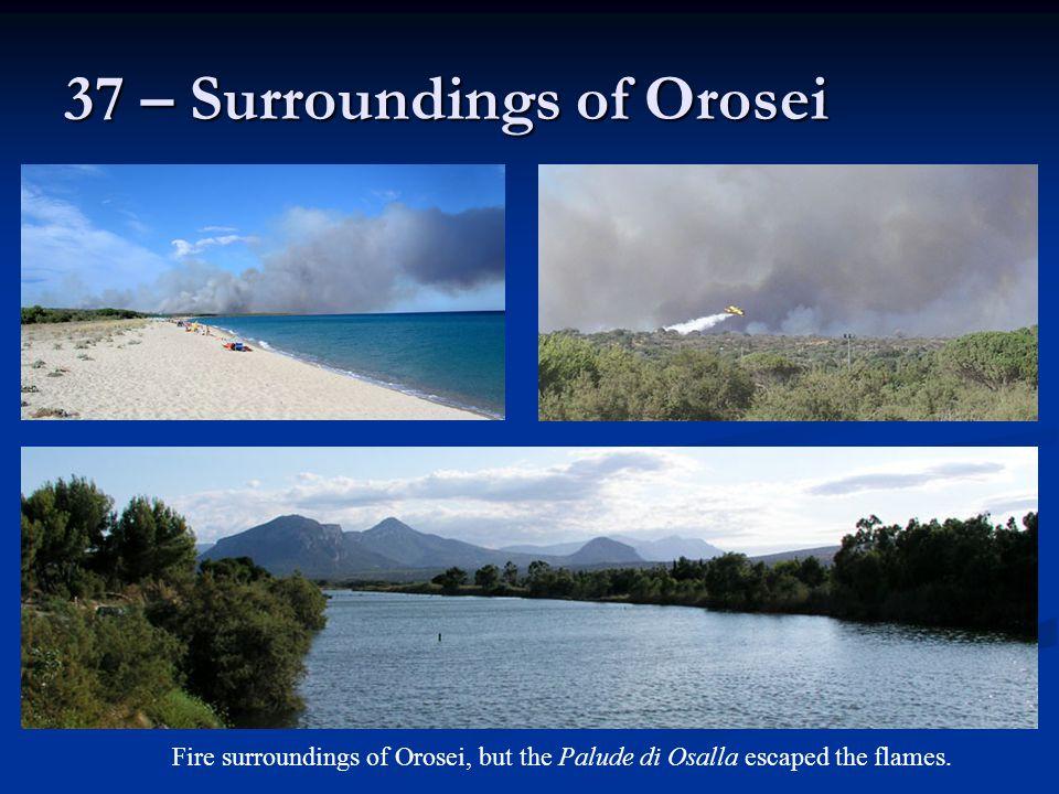 37 – Surroundings of Orosei Fire surroundings of Orosei, but the Palude di Osalla escaped the flames.